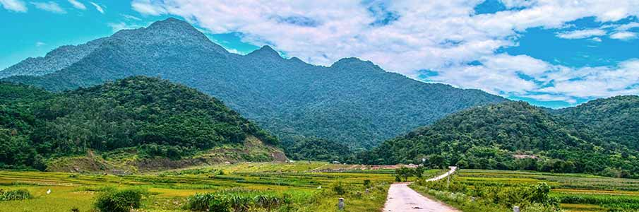 Trekking in Ba Vi National park - northern Vietnam