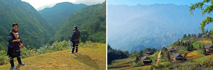Trekking in Hoang Lien National park