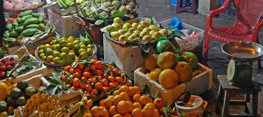 vietnam-food-fruit