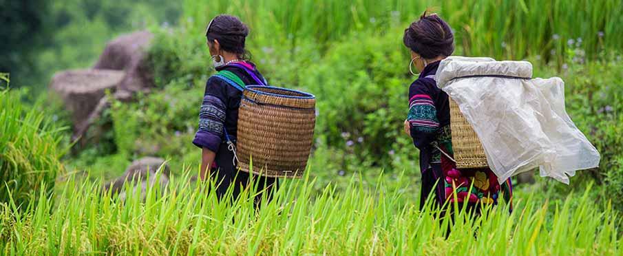 yen-bai-vietnam-hmong
