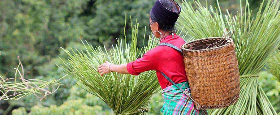 ethnic-vietnam-hmong