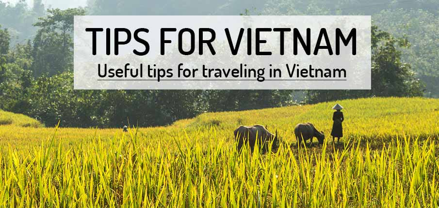 Questions about visiting Vietnam?