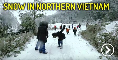 vietnam-snow-y-ty