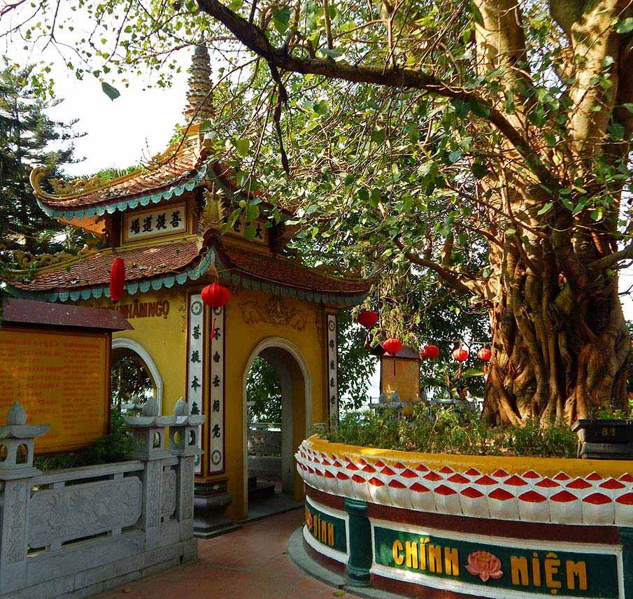 tran-quoc-pagoda-hanoi5