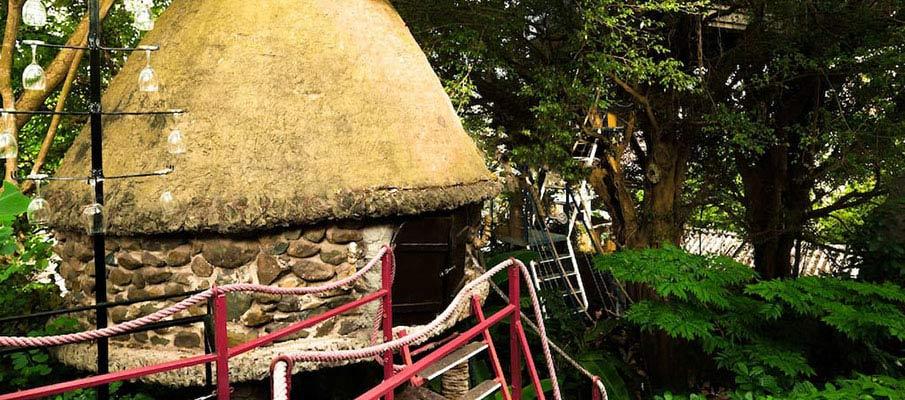 vietnam-airbnb-tropical-paradise-tree-house