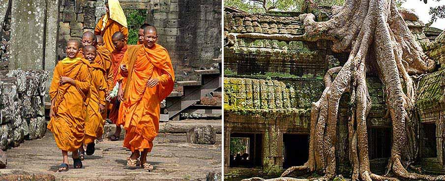 ta-prohm-angkor-wat-siem-reap