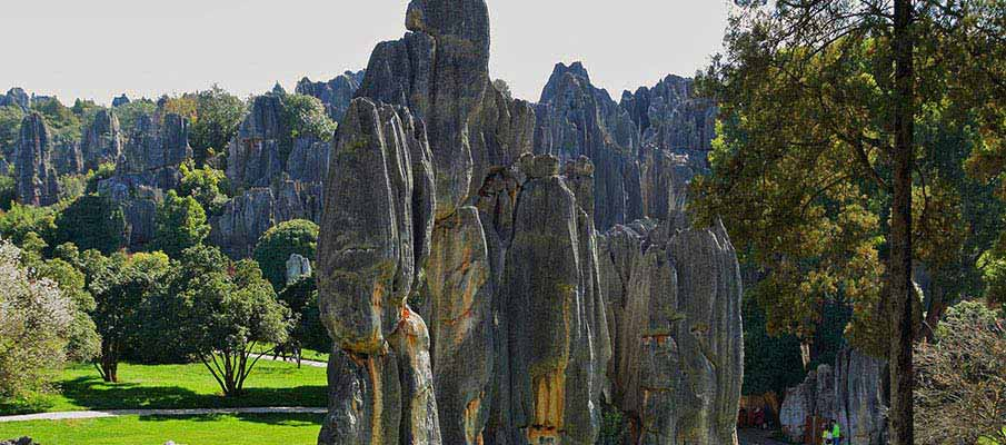 Yunnan-Stone-Forest-Kunming-China1
