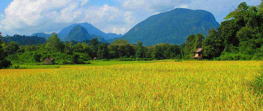 laos-country-side