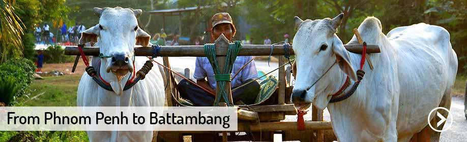 phnom-penh-to-battambang-bus-cambodia