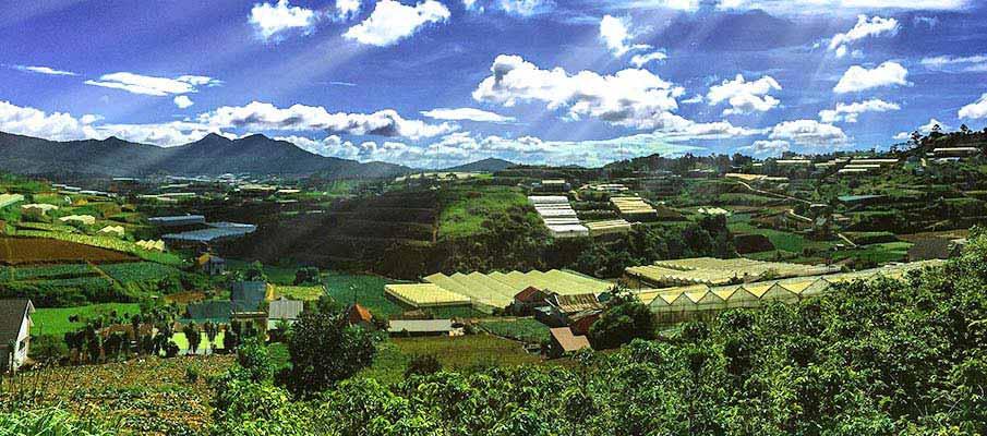 da-lat-farms-vietnam