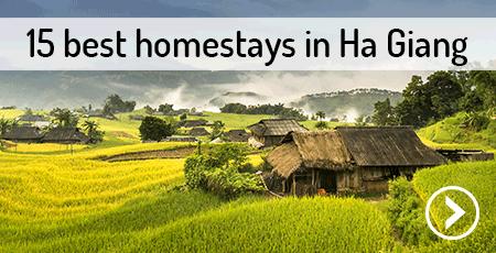 best-homestays-ha-giang