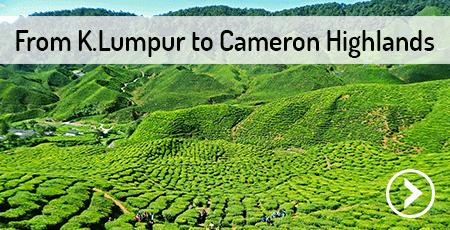 kuala-lumpur-cameron-highlands-malaysia