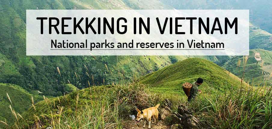 trekking-vietnam-national-parks