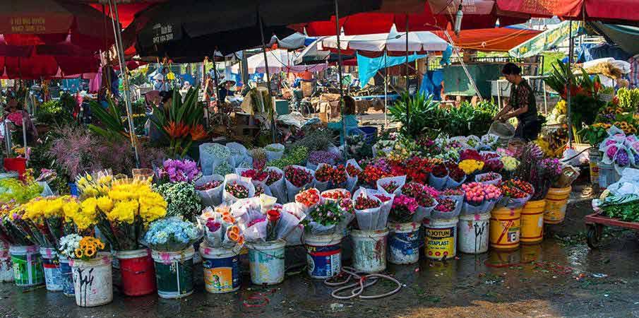 quang-ba-flower-market-hanoi