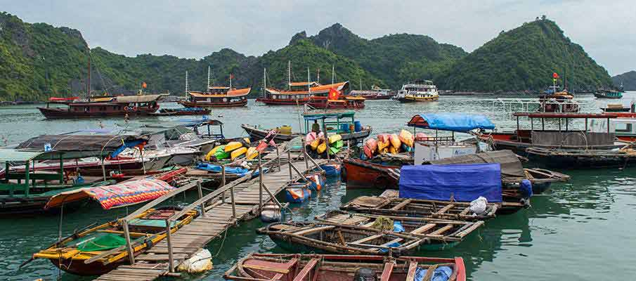 cat-ba-island-tourist-boats