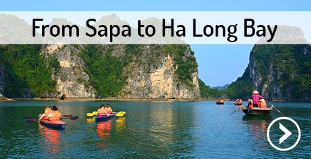 transport-sapa-ha-long-bay