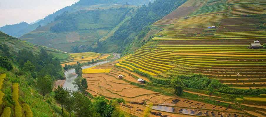 mu-cang-chai-rice-terrace-vietnam
