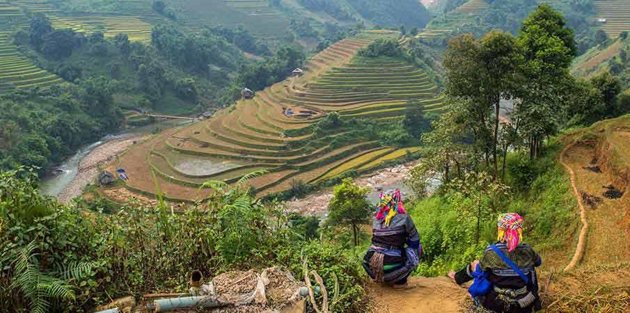 mu-cang-chai-rice-terrace4-vietnam