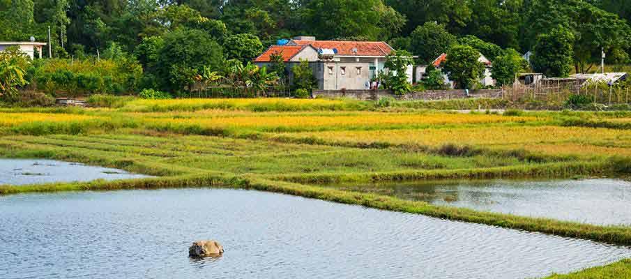 quan-lan-island-village-vietnam