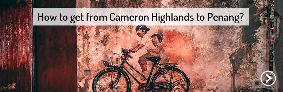 transport-cameron-highlands-penang-malaysia