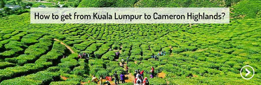 transport-kuala-lumpur-cameron-highlands-malaysia