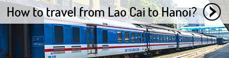 lao-cai-to-hanoi-transfer
