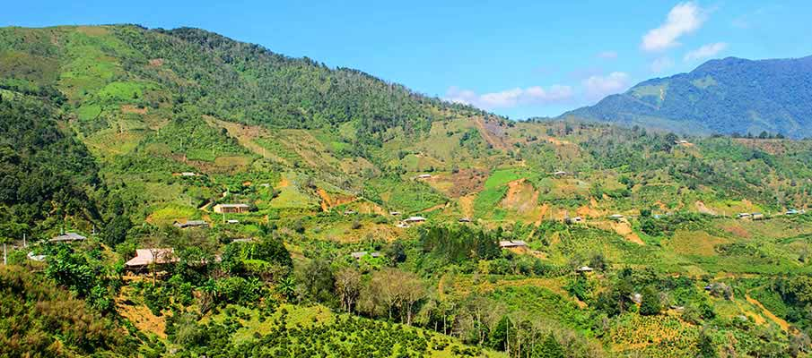 ta-xua-nature-reserve-vietnam