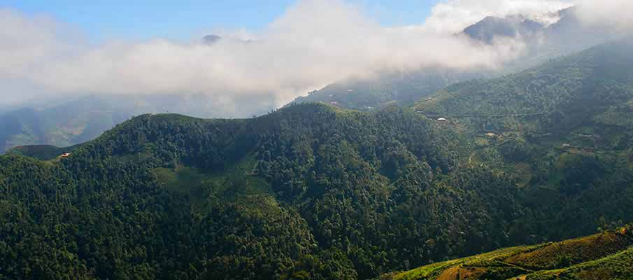 ta-xua-nature-reserve-vietnam1