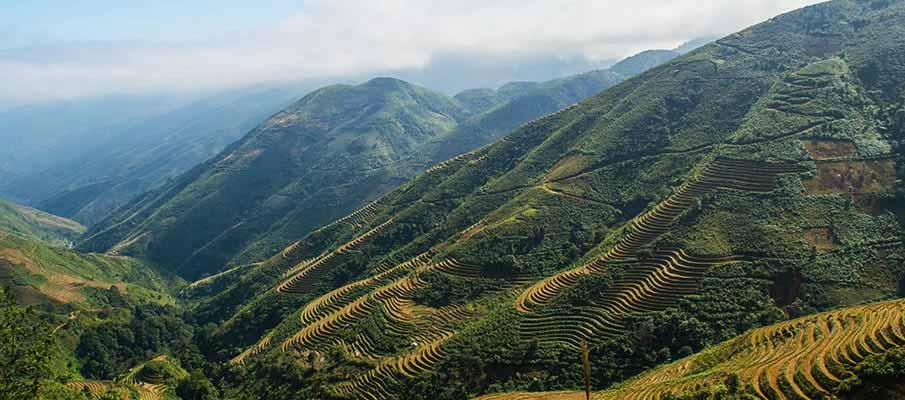 ta-xua-nature-reserve-vietnam3