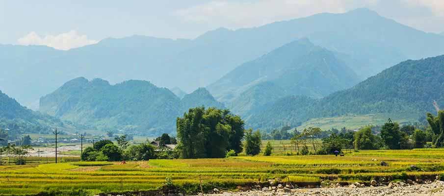 tu-le-yen-bai-rice-field-vietnam3