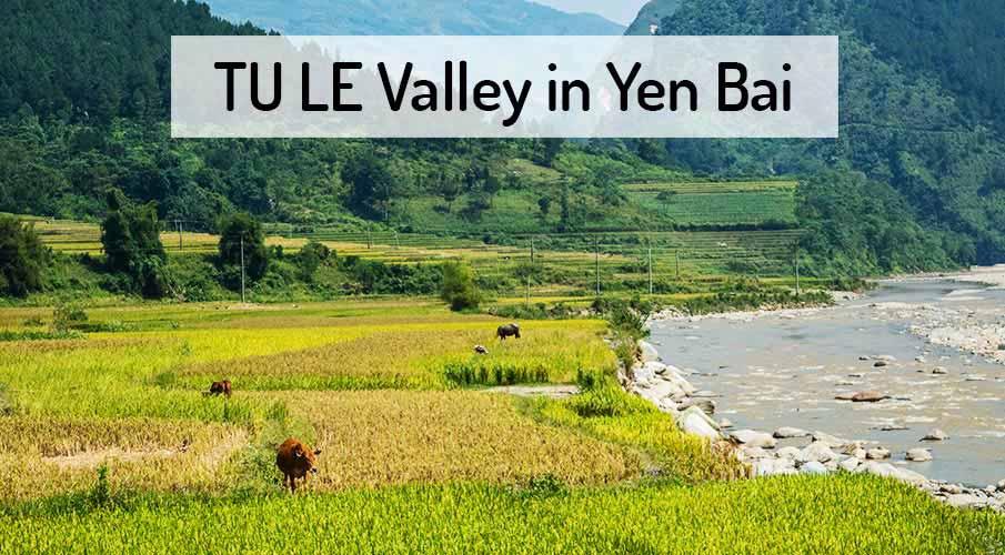 tu-le-yen-bai-rice-terraces-vietnam