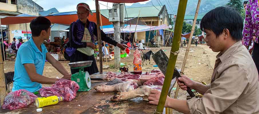 xuan-truong-bao-lac-vietnam-market