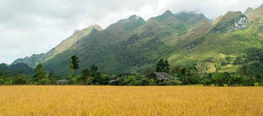 xuan-truong-bao-lac-vietnam3