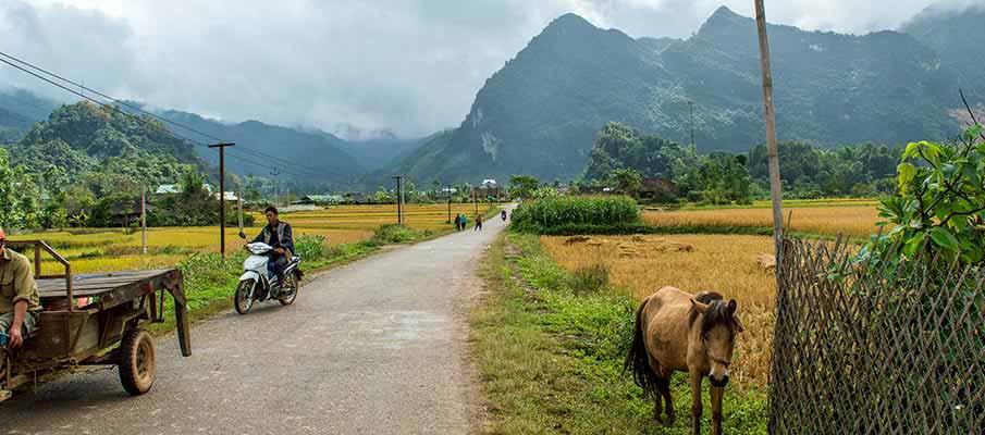 xuan-truong-bao-lac-vietnam5