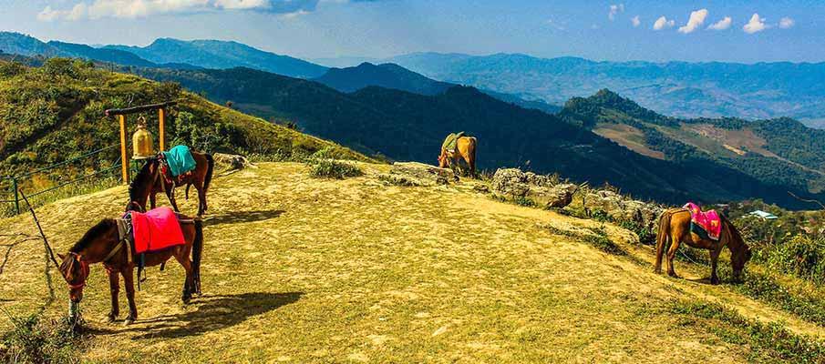 mountains-horses-chiang-mai