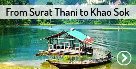 surat-thani-to-khao-sok-national-park