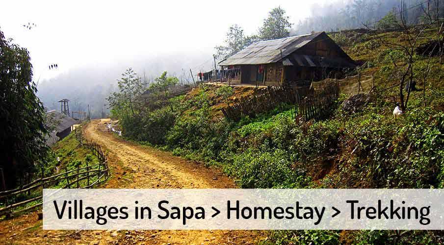 vietnam-sapa-villages-homestay-trekking