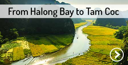 travel-halong-bay-to-tam-coc
