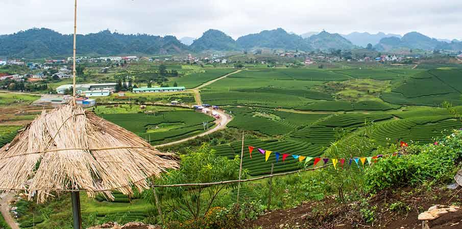 moc-chau-tea-plantations-trai-tim-hill