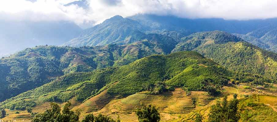 muong-hoa-valley-sapa-vietnam
