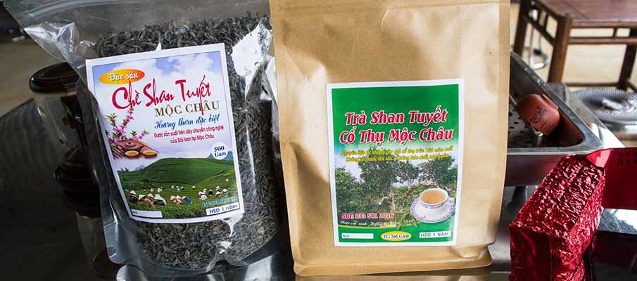 shan-tuyet-tea-moc-chau-vietnam