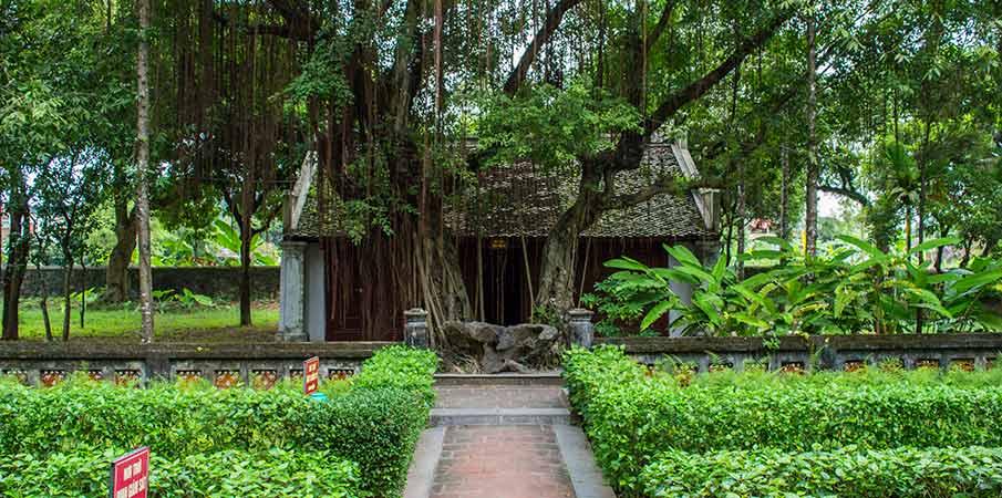 hoa-lu-ancient-city-gardens-ninh-binh