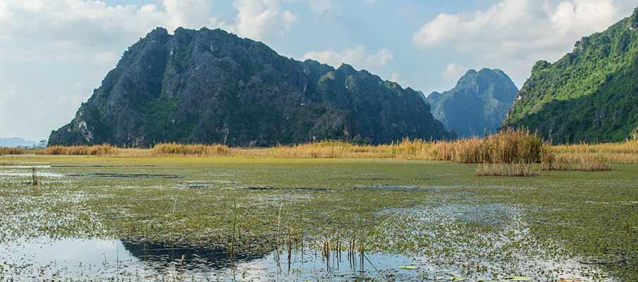karst-scenery-van-long-reserve-vietnam