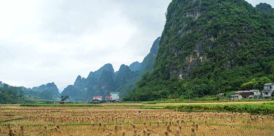 ma-phuc-pass-vietnam-cao-bang