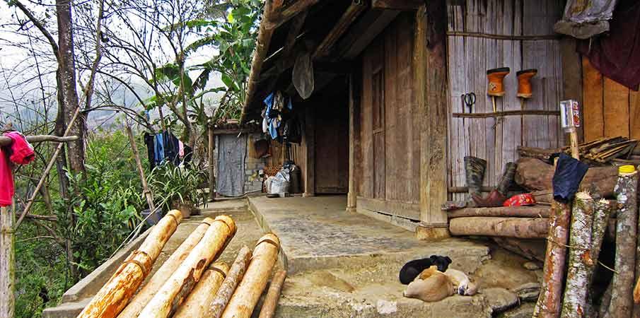 muong-hoa-valley-hau-thao-homestay