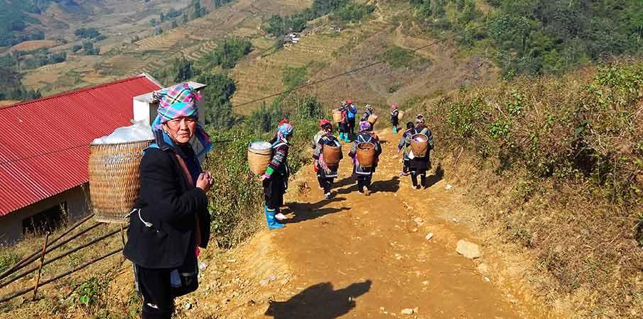 muong-hoa-valley-hmong-sapa-vietnam