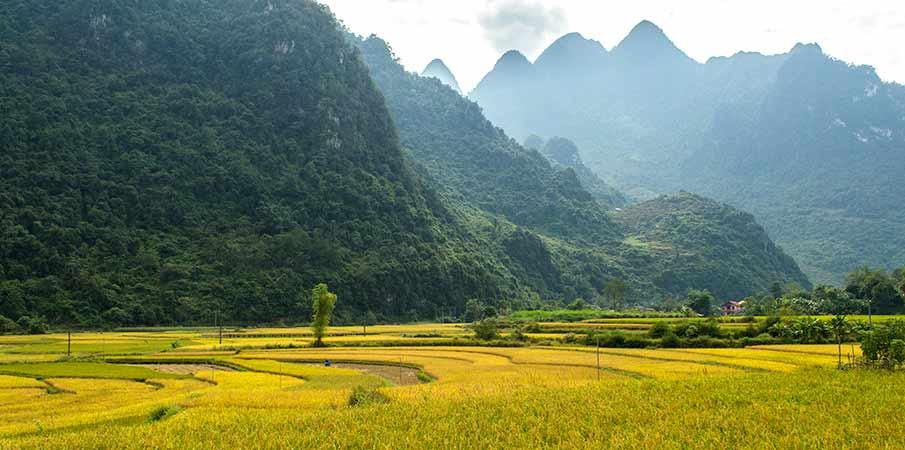soc-ha-cao-bang-vietnam